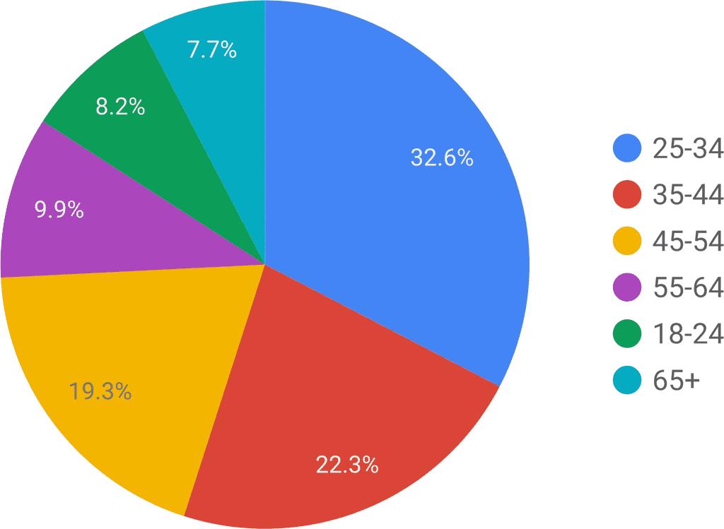 broker_age_pie_chart